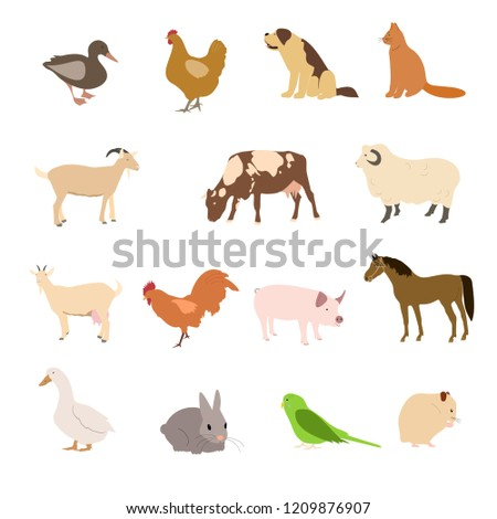 Set of domestic animals and farm animals. Vector collection of Cats, dogs, parrot, rabbit hamster and other pets.