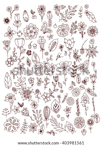 Set of doodle flowers leaves. Hand drawn vector design elements. Brown & white.  Zentangl. Coloring book page for adult. Vintage.