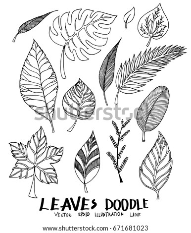 Set of Doodle Leaves Sketch line vector illustration