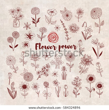 Set of doodle sketch flowers on vintage background