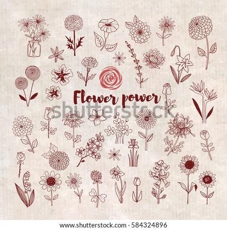 Set of doodle sketch flowers on vintage background