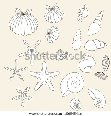 Set of drawn sea-shells on beige background. Objects grouped and named in English. No mesh, gradient, transparency used. - stock vector