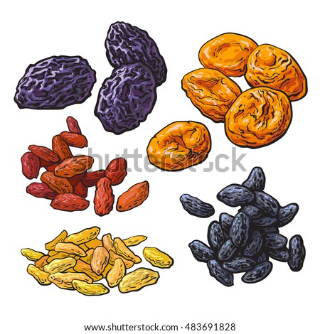 Shutterstock Set of dried fruits - prunes, apricots and raisins, sketch style vector illustration isolated on white background. Drawing of dries plums, dries apricots and a mix of red, golden and black raisins