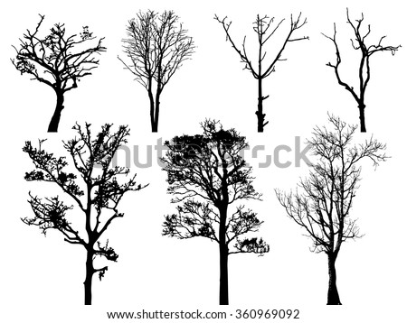 set of dry tree isolated