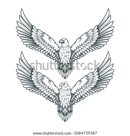 set of eagles bald eagle logo