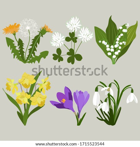 set of early spring flowers on