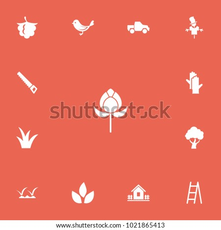 Set of 13 editable agriculture icons. Includes symbols such as hacksaw, scarecrow, bird and more. Can be used for web, mobile, UI and infographic design.