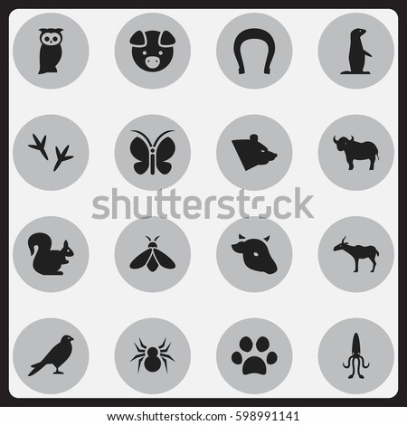 Set Of 16 Editable Animal Icons. Includes Symbols Such As Gazelle, Eagle, Wild Rodent And More. Can Be Used For Web, Mobile, UI And Infographic Design.