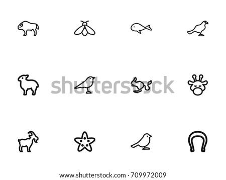 set of 12 editable animal