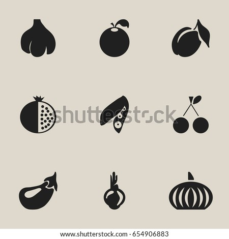 set of 9 editable fruits icons
