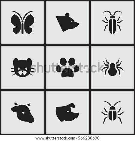 Set Of 9 Editable Nature Icons. Includes Symbols Such As Grizzly, Bug, Feline And More. Can Be Used For Web, Mobile, UI And Infographic Design.