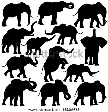 stock-vector-set-of-editable-vector-silhouettes-of-african-elephants-in-various-poses
