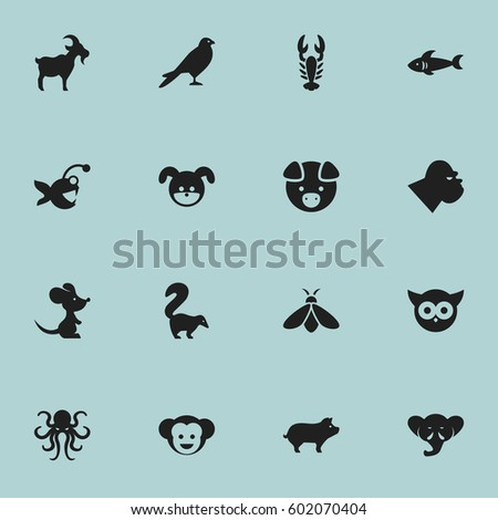 Set Of 16 Editable Zoo Icons. Includes Symbols Such As Hog, Night Fowl, Fish And More. Can Be Used For Web, Mobile, UI And Infographic Design.