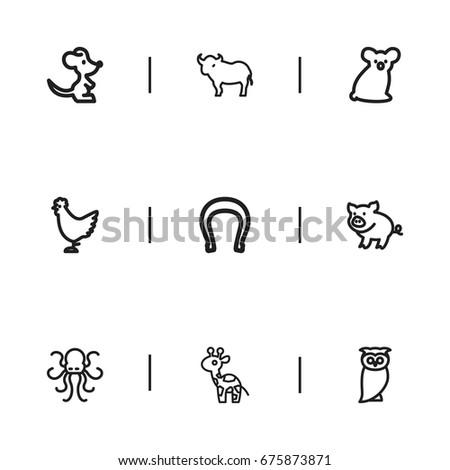 set of 9 editable zoology icons