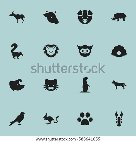 Set Of 16 Editable Zoology Icons. Includes Symbols Such As Conch, Hog, Feline And More. Can Be Used For Web, Mobile, UI And Infographic Design.