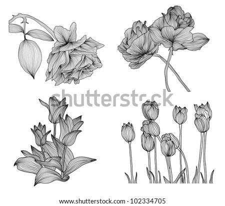 set of elegant decorative rose