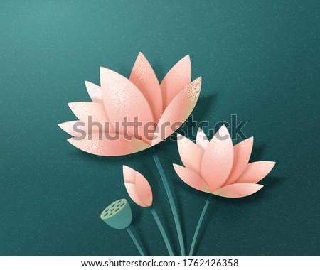 set of elegant lotus flowers in