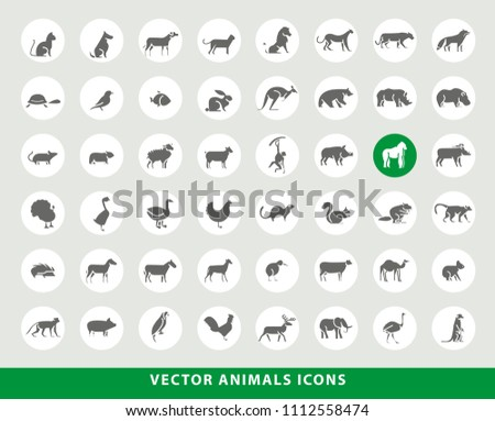 Set of Elegant Universal Black Minimalistic Solid Animals Icons on Circular Colored Buttons on Grey Background