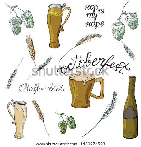 Set of elements. Lettering,  beer cups and battles with hop and wheat in green and gold .