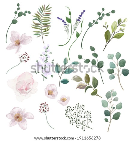 Set of elements of flowers and leaves for your design. To create backgrounds, banners, wedding cards. Vector illustration.