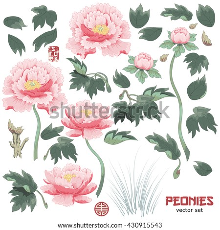 set of elements of  peony