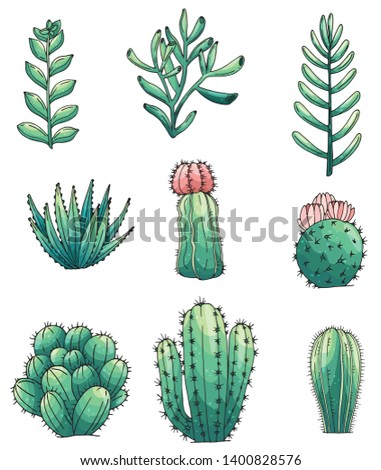 Set of elements with hand drawn colored cacti and succulents. Vector icons in colorful sketch style. Sketch style isolated objects
