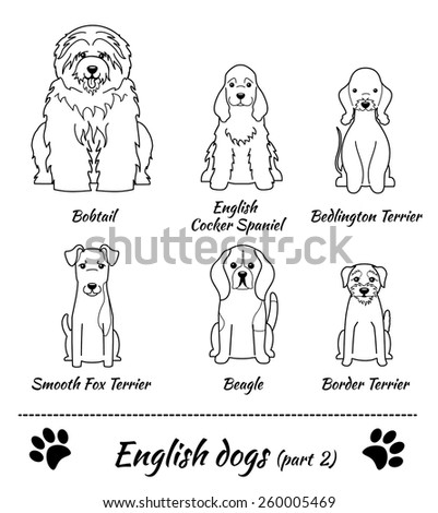 set of english dogs black and