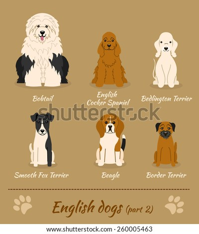 set of english dogs   part 2