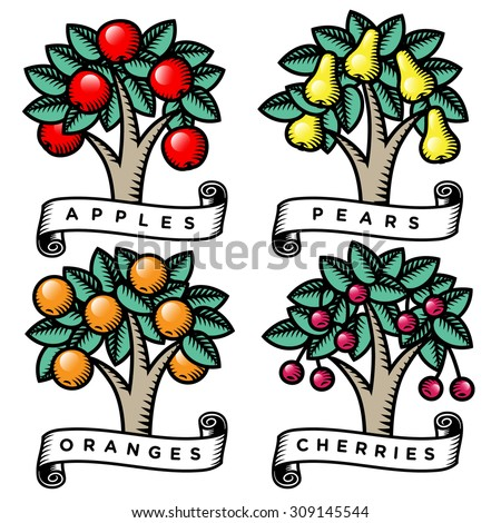 set of engraved trees full of