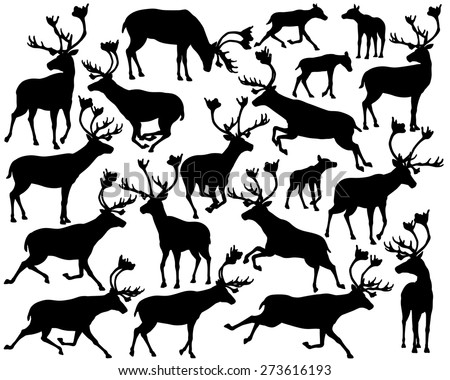 set of eps8 editable vector silhouettes of reindeer or caribou standing walking running and