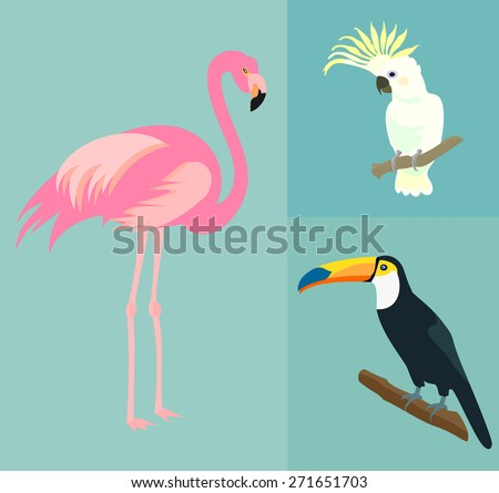 Set of exotic birds. Flamingo, toucan, parrot cockatoo. Vector.