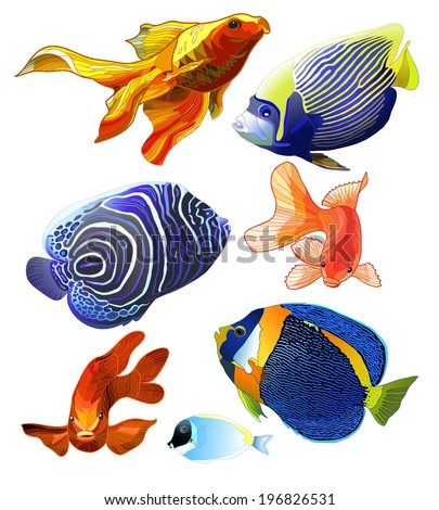 Set of exotic colorful fish Abstract isolated fish on white background Vector illustration