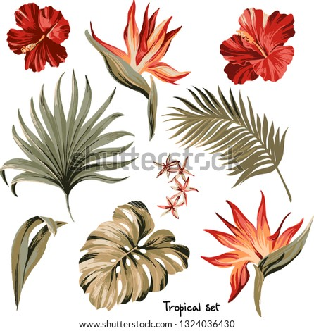 Set of exotic tropical flowers and palm leaves in pastel colors  artwork for tattoo, fabrics, souvenirs, packaging, greeting cards and scrapbooking