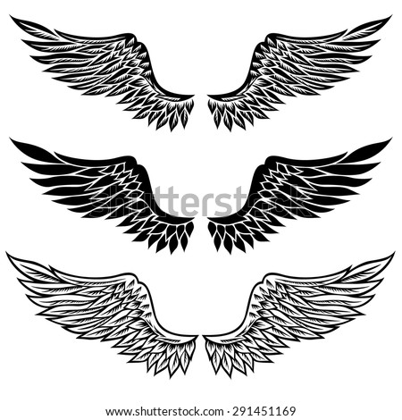 set of fantasy stylized wings