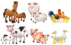 Set of farm animal illustration