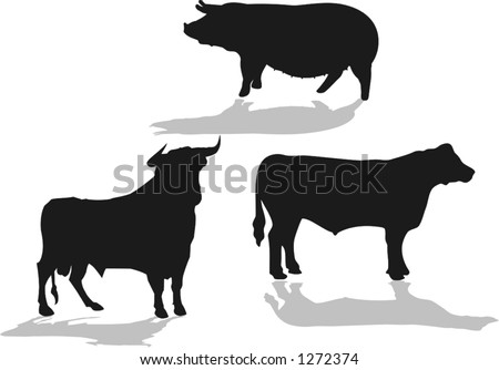 Set Of Farm Animals, Bull, Cow, Pig, Vector Illustrations ...
