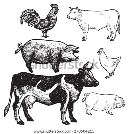 set of farm animals   chicken