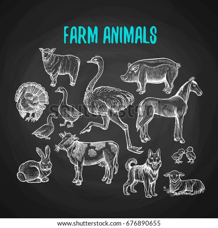 set of farm animals in the