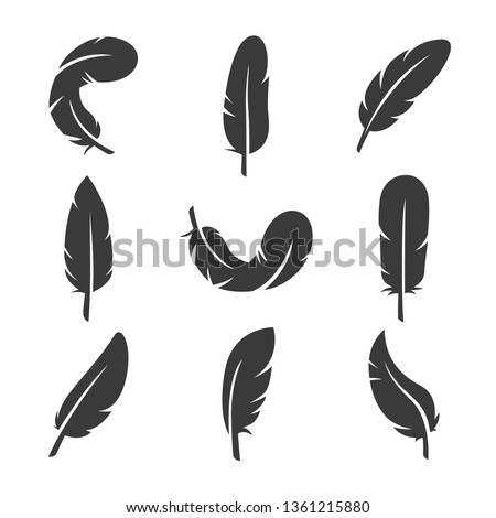 set of feathers icon vector illustration Foto d'archivio ©