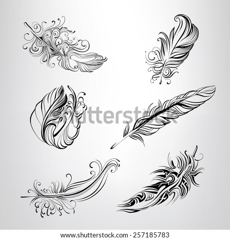 set of feathers in an ornament