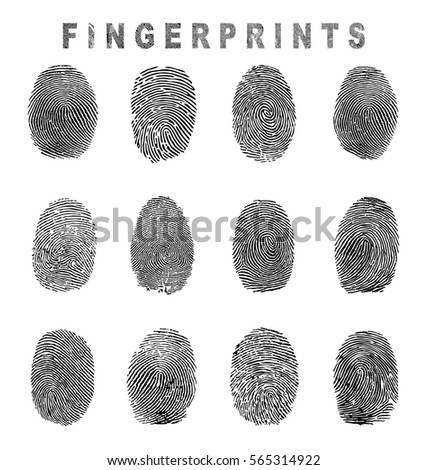 Set of fingerprint vector