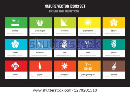 set of 15 flat nature icons
