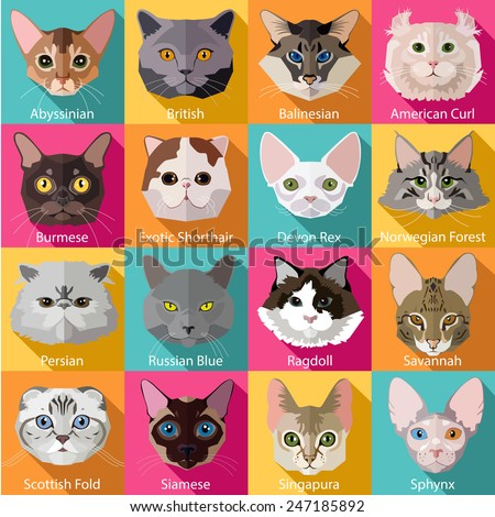 set of flat popular breeds of