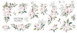 Set of floral branch. Flower pink rose, green leaves. Wedding concept. Floral poster, invite. Vector arrangements for greeting card or invitation design background