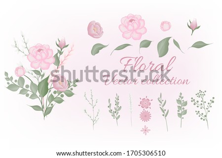 Set of floral elements. Pink flower ,green leaves. garden plants. Set: leaves flowers, branches, herbs and other natural elements. Wedding concept. Floral poster, invite.