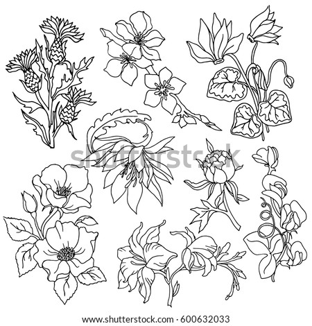stock-vector-set-of-flower-and-plant-patches-elements-set-of-stickers-pins-patches-and-handwritten-notes