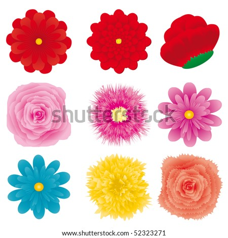 set of flower design element