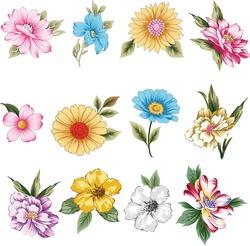 set of flower pattern on white