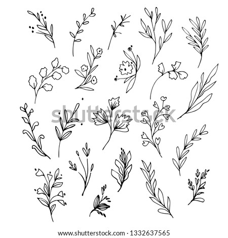 Set of flowering plants and tree branches with buds, leaves and berries. Hand drawn botanical illustration. Black and white vector image.