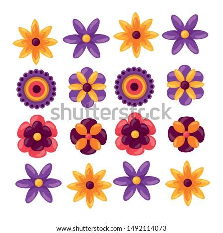 Set of flowers design, floral nature plant ornament garden decoration and botany theme Vector illustration